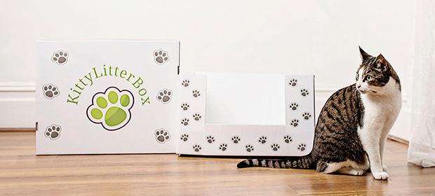 kittylitterbox