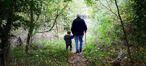 Granddparent and grandchild walking in the forest