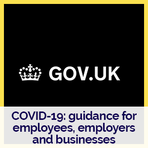 Gov.uk logo with link to business support